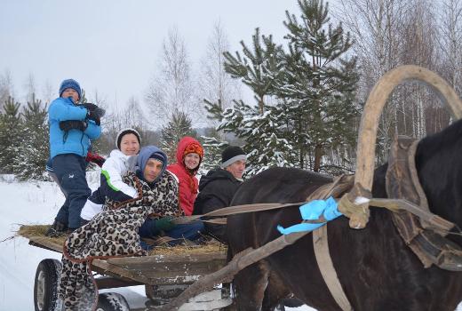 Зимние каникулы для всей семьи